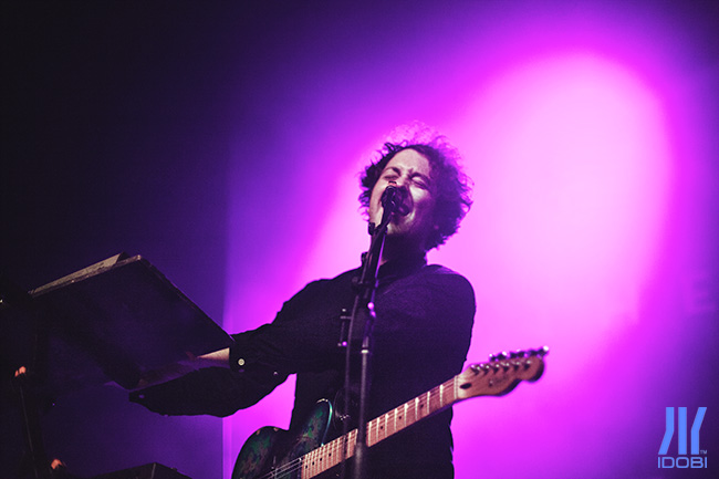 the wombats 12