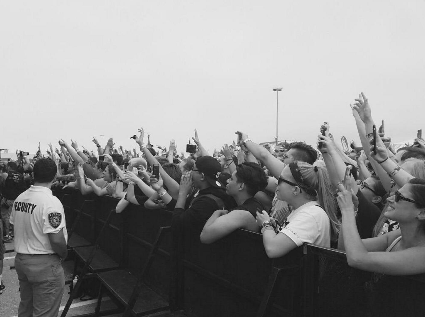 Warped crowd 2016