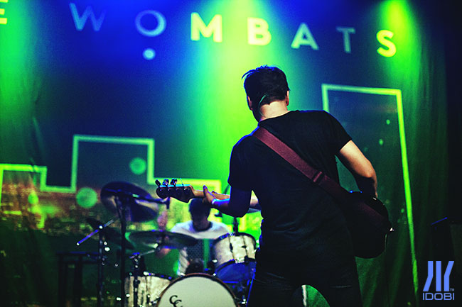 the wombats 6